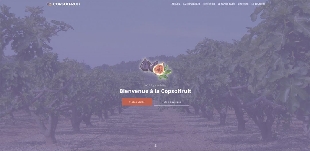 Copsolfruit